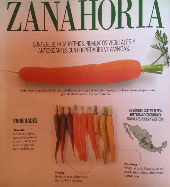 ZANAHORIA - Contiene Betacarotenos, pigmentos vegetales y antioxidantes con propiedades vitamínicas.    Perteneciente a la familia de las umbelíferas, este vegetal de color naranja y textura leñosa proporciona grandes beneficios al cuerpo humano.